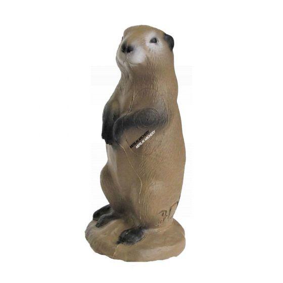 3Di Prairie Dog