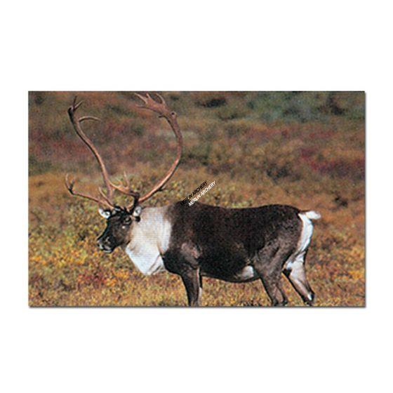 Delta Mckenzie Target Face - Caribou