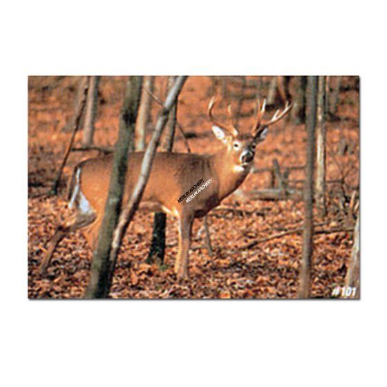 Delta Mckenzie Target Face - 101 Whitetail Deer