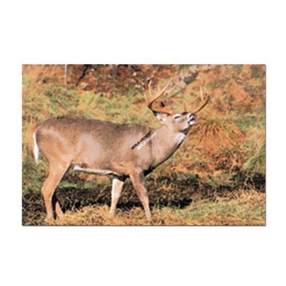 Delta Mckenzie Target Face - 203 Whitetail Deer