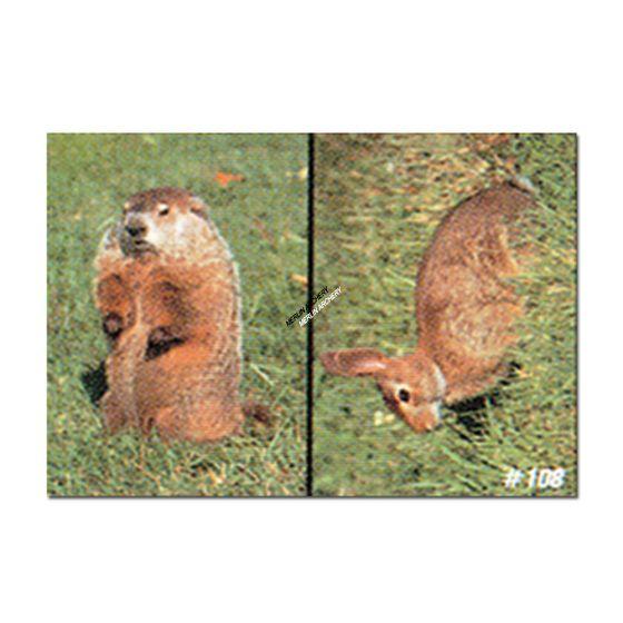Delta Mckenzie Target Face - Woodchuck/Rabbit