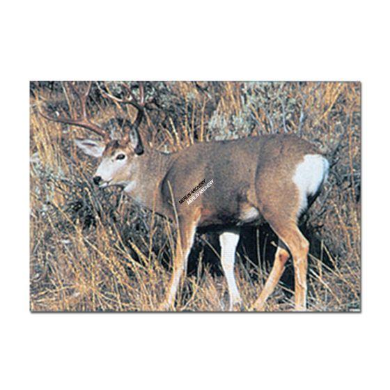 Delta Mckenzie Target Face - Mule Deer