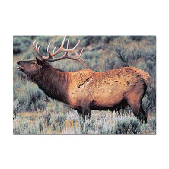 Delta Mckenzie Target Face - Elk