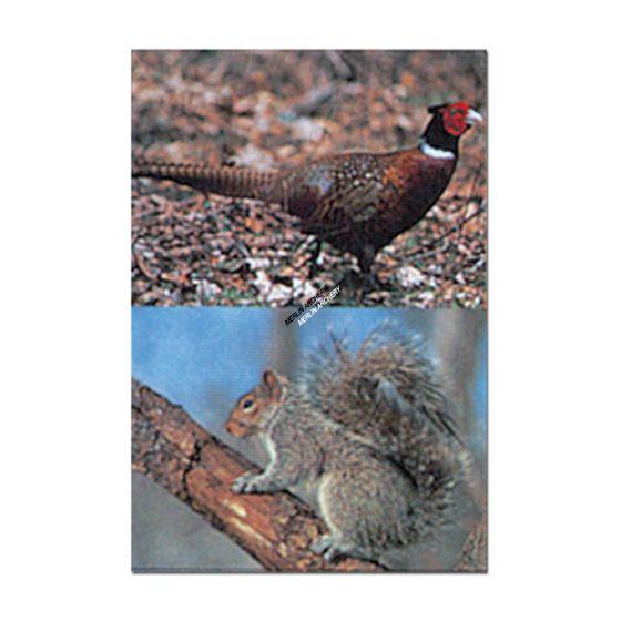 Delta Mckenzie Target Face - Pheasent/Squirrel