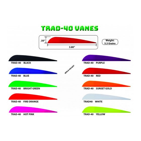 """AAE Arizona Trad-40 Vanes - 3.8"""""""