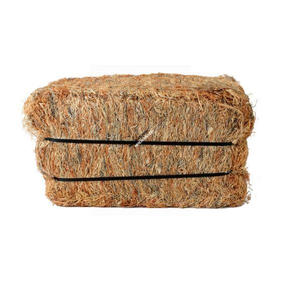 Bearpaw Wood Wool Target