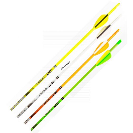 Cross-X Iridium Arrows